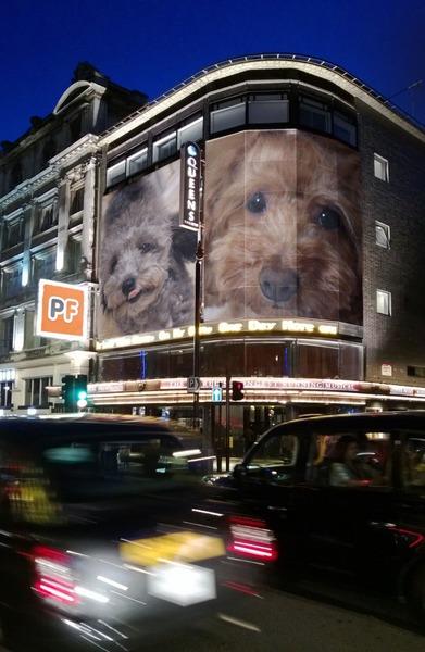 PhotoFunia-b6b56d_oパリの街角.jpg